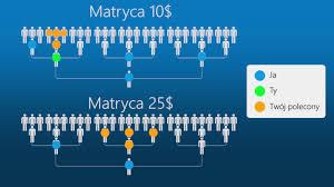FN Matrix Tree
